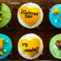 cupcakes-gatos-patos-personalizados-caprichitos-dulces-45